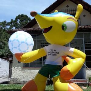Prot-Fuleco-Copa-20141